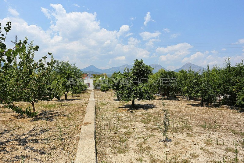 furnished-homes-in-konyaalti-surrounded-by-fruit-trees-006.jpg