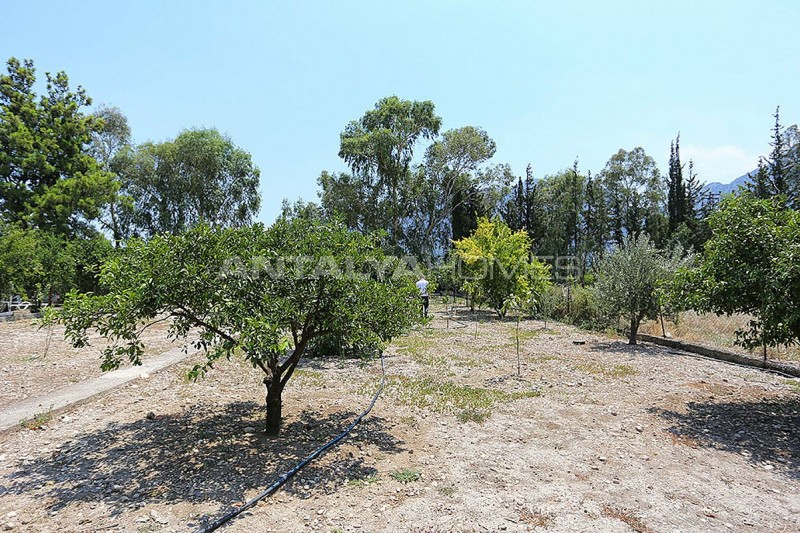 furnished-homes-in-konyaalti-surrounded-by-fruit-trees-008.jpg