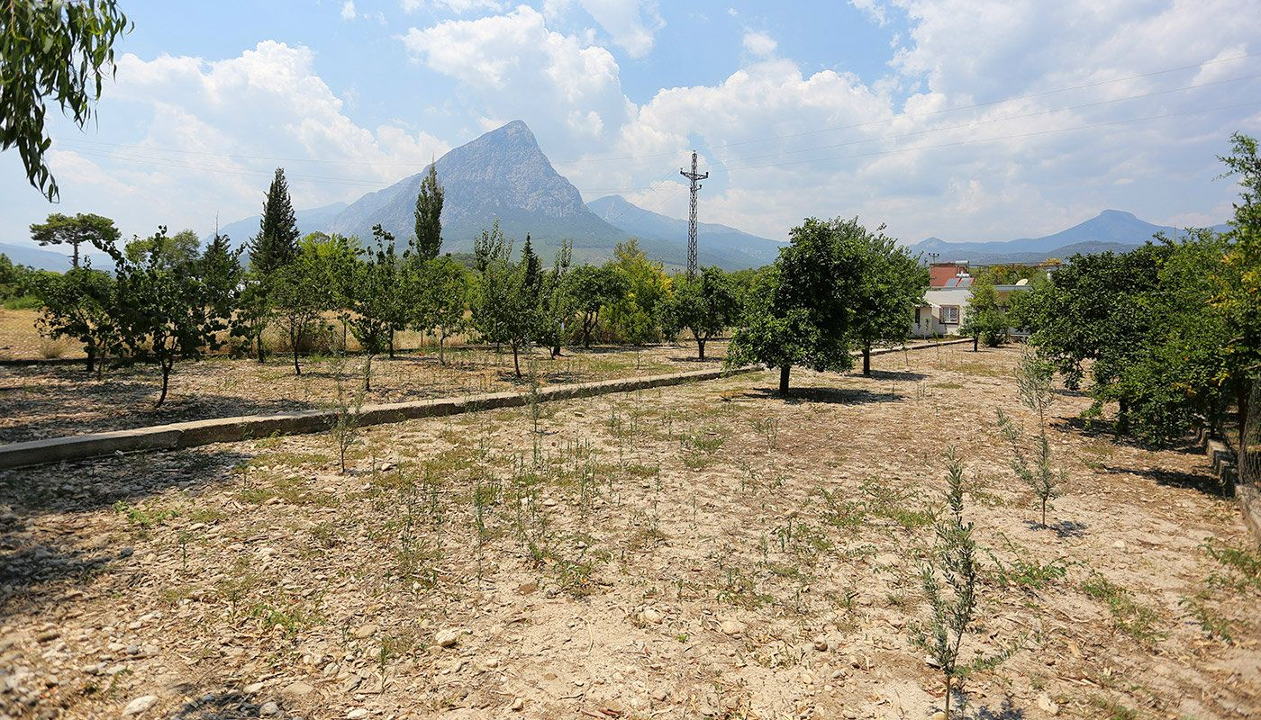furnished-homes-in-konyaalti-surrounded-by-fruit-trees-main.jpg