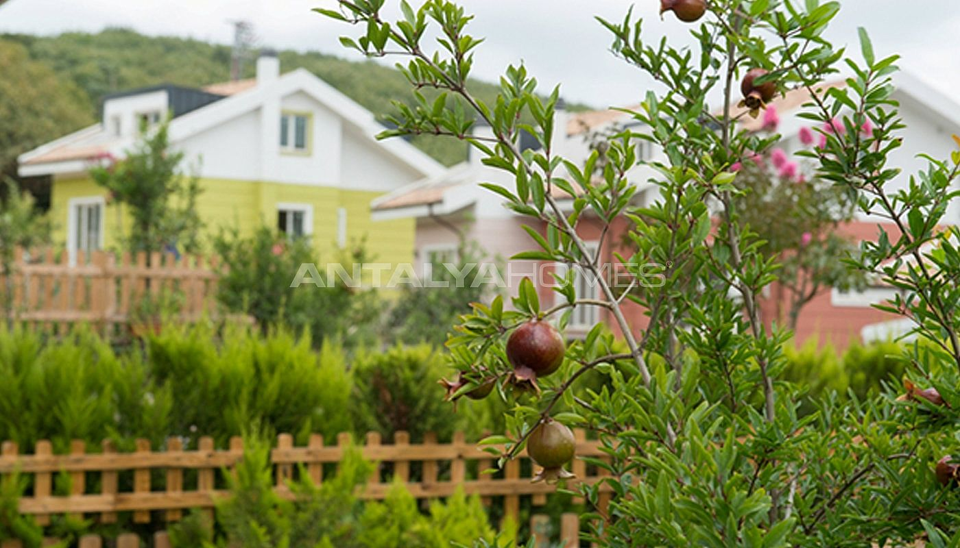 nature-friendly-istanbul-villas-surrounded-by-the-forest-006.jpg